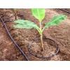 宁夏滴灌带厂家|质量良好的宁夏滴灌带供应信息