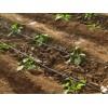 宁夏滴灌带|口碑好的,宁夏顺雨节水灌溉倾力推荐,宁夏滴灌带