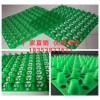 福州20厚聚乙烯排水板/车库排水板价格