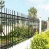价位合理的锌钢护栏 在哪里能买到实惠的锌钢护栏