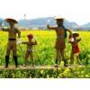 江苏稻草人工艺品-想做稻草人工艺就到沭阳半分利景观工程