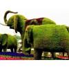 江苏动物绿雕_哪家公司做动物绿雕比较专业